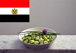 Cours de cuisine egyptienne Saint Germain en Laye 78